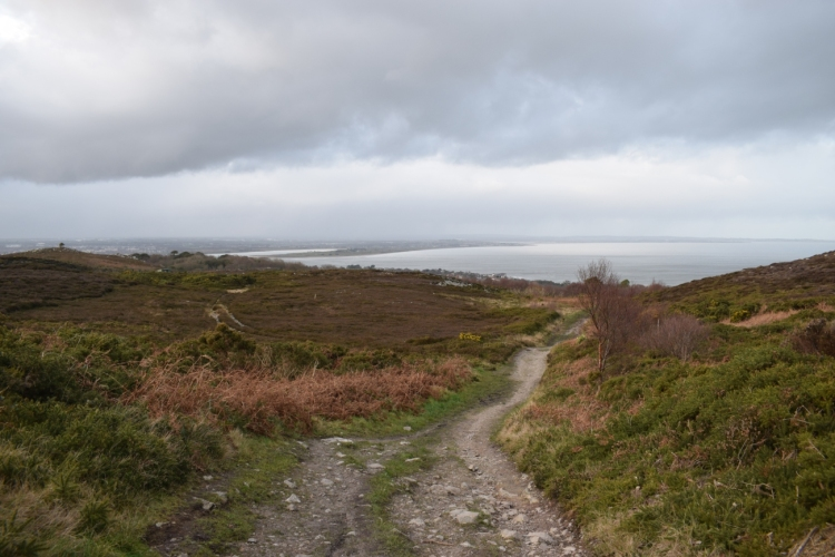 Ierland (625)