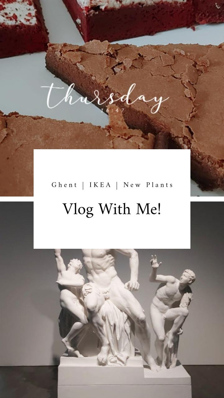 Vlog with me: Ghent   IKEA Haul   NewPlants